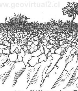 formacin de suelos polack